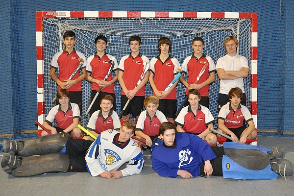 tsv hockey mannheim